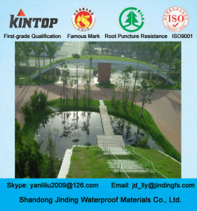 HDPE Geomembrane Used on Fish Farm Pond Liner pictures & photos