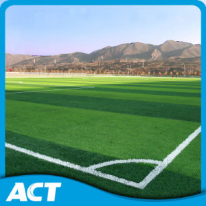 High Quality Football Synthetic Grass in China (W50) pictures & photos