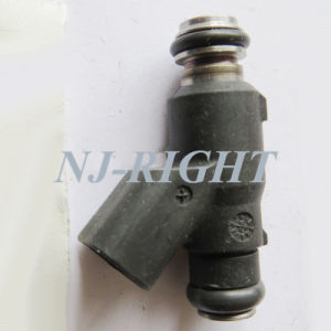 DELPHI Fuel Injector (25359853) for BYD F3 FRV pictures & photos