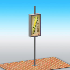 Outdoor Double Sided Aluminum Lamp Pole LED Ads Light Box pictures & photos