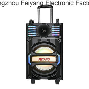 Feiyang Outdoor Party Bluetooth Trolley Speaker Qx-1212 pictures & photos