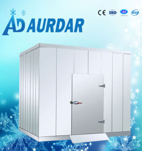 Hot Sale Refrigerator Equipment with Factory Price pictures & photos
