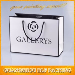 Shopping Bag/Paper Shopping Bag/Shopping Paper Bag pictures & photos