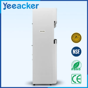 Hot Water Dispenser Price Specification/Cooler Hot Water Dispenser pictures & photos