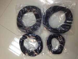 Rbsic (SiSiC) Silicon Carbide Seal Rings, O-Ring pictures & photos