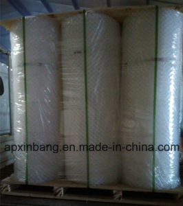 Cheapest High Quality Plastic Mesh pictures & photos