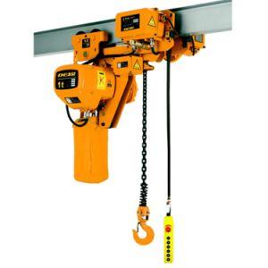 Electric chain hoist pictures & photos