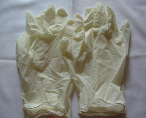 White Color Disposable Latex Gloves pictures & photos