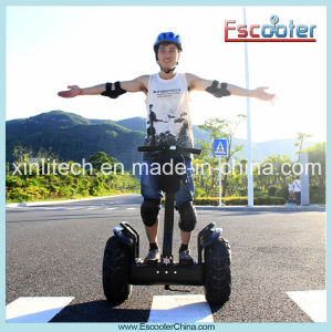 China Electric Chariot pictures & photos