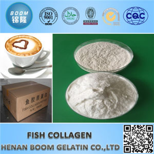 Food Grade Collagen as Food Nutritive Supplement pictures & photos