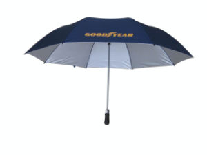 Auto Open 2 Fold Golf Umbrella 190t Polyester (AU005) pictures & photos
