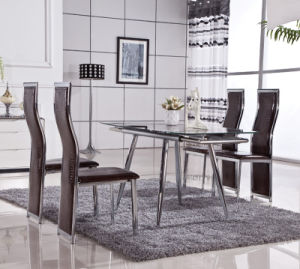 Stainless Steel PU Leather Dining Room Table Chair (ET29 & EC48-1)