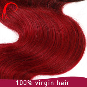Top Quality Virgin Remy Brazilian Ombre Human Hair Extensions pictures & photos