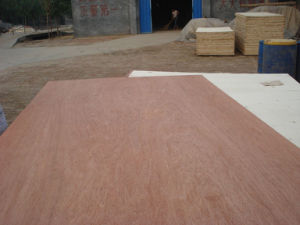 Shandong Low Price Good Quality Plywood for Furniture pictures & photos