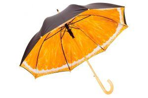 Fruit Umbrella, Inside Printing Umbrella (BR-ST-166) pictures & photos