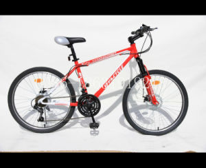 "26"" Mountain Bicycle with Front and Rear Disc Brake (HC-2647) pictures & photos"