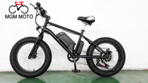 20 Inch Fat Tire Mountain Electric Bike pictures & photos
