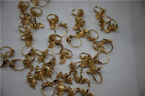 PVD Vacuum Jewelry Gold Plating Machine pictures & photos