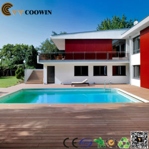 Swimming Pool in The Surrounding Decorative Floor (TS-01) pictures & photos