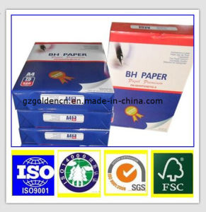 70/75/80GSM Copy Paper, A4 Office Paper, Printing Paper pictures & photos
