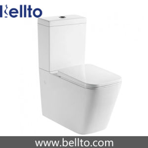 Water Mark Washdown Two Piece Toilet for Sanitary Ware (319) pictures & photos