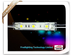 LED Modeule Waterproof LED Lighting With 3PCS SMD5050 LED (FD-MD5060W3-A)