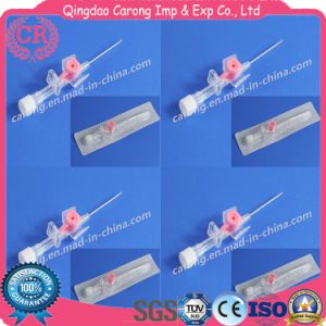 Sterile Medical Disposable High Quality Safety Type IV Cannula pictures & photos