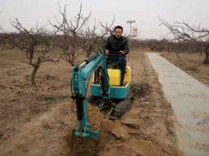 Mini Excavator Xn08 0.8t, 1.5t Cheap Small Excavator for Sale pictures & photos