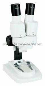STX 20x Mini Type Student Microscope pictures & photos