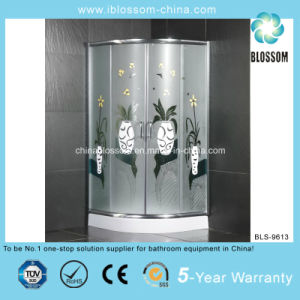 Stainless Steel Corner Shower Room (BLS-9613) pictures & photos