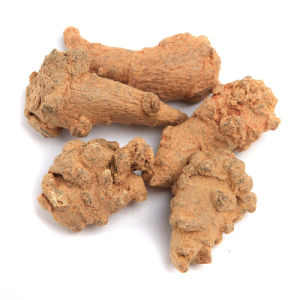 Radix Notoginseng/Scatter Stasis, Hemostatic, Relieve Swelling Pain
