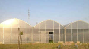 The Cheapest Hot Sale and Easily Installed PC Greenhouse pictures & photos