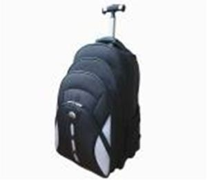 High Quality Laptop Trolley Bag Computer Luggage for Travel (ST7009B) pictures & photos