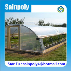 Most Popular China Supplier Plastic-Film Garden Greenhouse pictures & photos