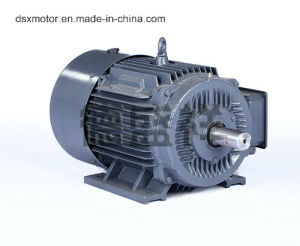 18.5kw Ie2 Electric Motor pictures & photos