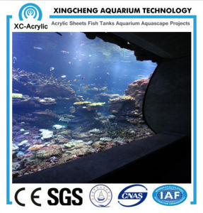 Cast Flat UV Acrylic Sheet of Aquarium Wall pictures & photos