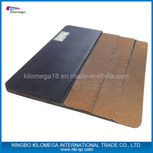 High Quality Conveyor Belt From Special Manufacturer pictures & photos