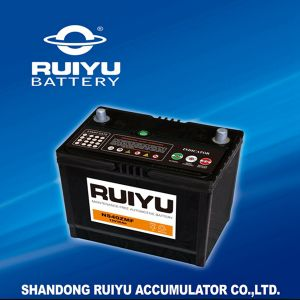 Small Types 12V Batteries for Cars pictures & photos