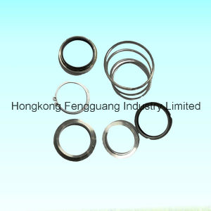 Oil Seal Air Compressor Screw Auto Parts Mechanical Oil Seal pictures & photos