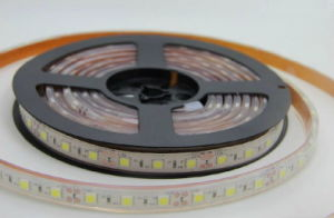 Decorative White Waterproof IP65 LED Strip 5050 SMD 300LEDs for Bridge, Cars pictures & photos