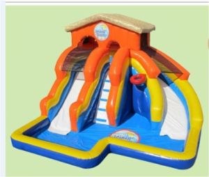 Inflatable Water Slide for Kids Jw0523 pictures & photos
