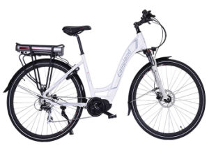 Electric Bike 70 Inch Size (EL-dB7012L) pictures & photos