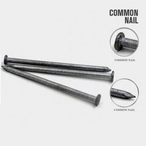 New Design Factory Price of Q195 Common Nail pictures & photos