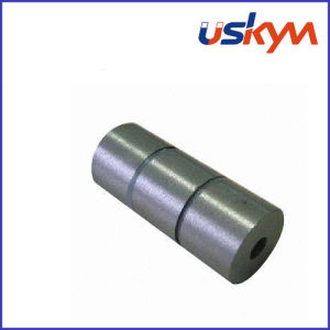 Ring SmCo Magnet/Circular SmCo Magnets (R-004) pictures & photos