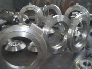 Alloy Steel Tube and Pipe Welding Flanges pictures & photos