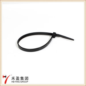 High Temperature Resistant Self-Locking Nylon Cable Tie Zip Tie pictures & photos