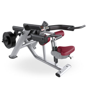 Lifefitness Gym Equipment / Seated DIP (SF11) pictures & photos