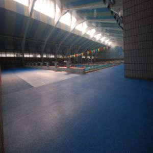 Cheap Anti-Slip Swimming Pool Flooring pictures & photos
