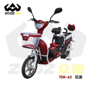 Professional Competitive CE 350W Brushless Motor E Electric Scooter (TDR-62Z)