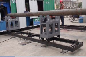 Track (Rail) & Trolley (Carriage) Conveying System pictures & photos